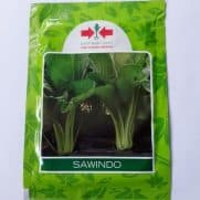 Sawi Manis Sawindo