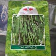 Buncis Talawang