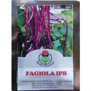 Kacang Panjang Ungu Fagiola