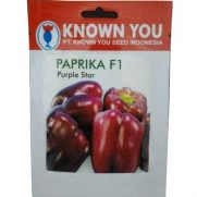 Paprika Ungu Purple Star