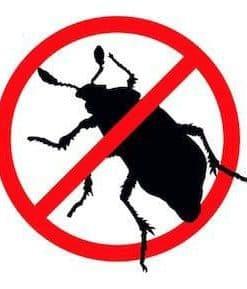 Insektisida