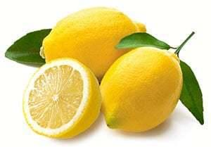 bibit tanaman buah impor