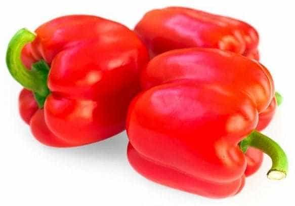 Bibit Paprika Merah